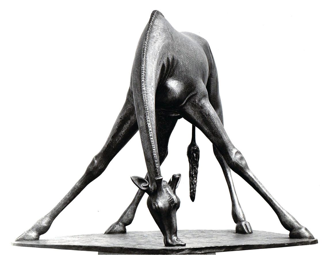 Giraffenbulle, saufend • Bronze • 50cm • 1966